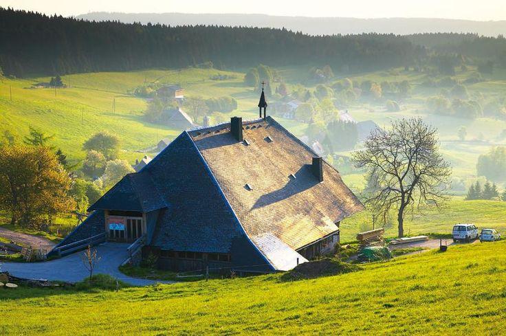 Schluchtensteig Schwarzwald | Wutachschlucht