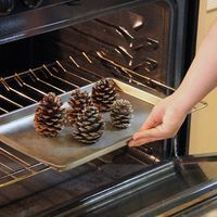 Cinnamon scented pine cones to fill your home with the incredible, seasonal aroma of cinnamon! Step by step instructions.