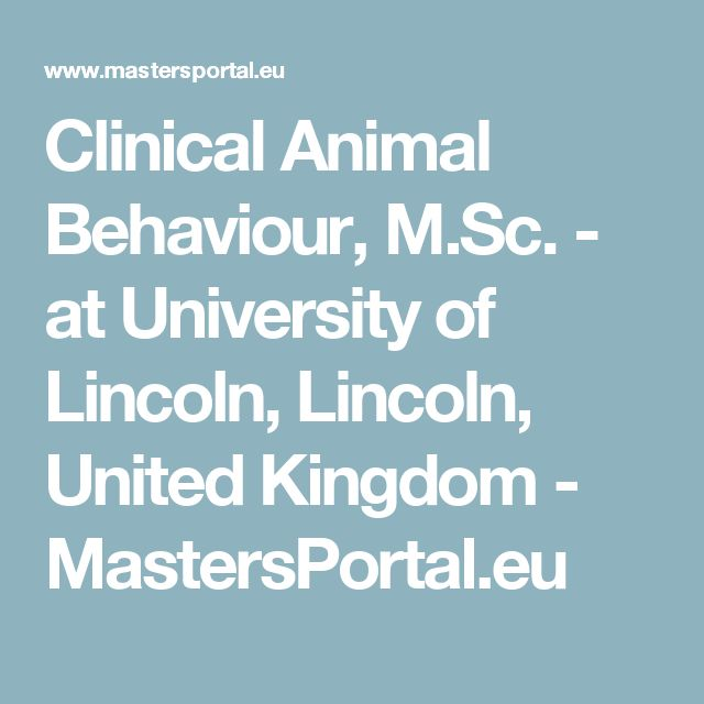 Clinical Animal Behaviour, M.Sc. - at University of Lincoln, Lincoln, United Kingdom - MastersPortal.eu