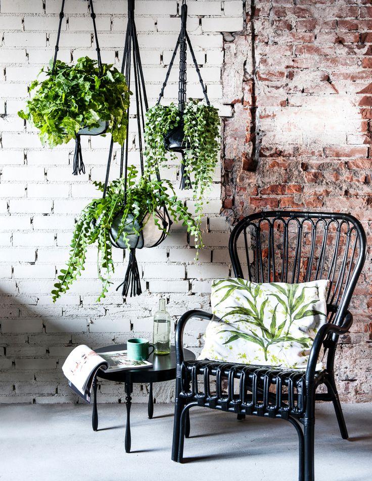 #macramé plantenhangers, styling: Moniek Visser, fotografie: Sjoerd Eijckmans