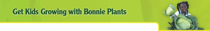 Bonnie Plants 3rd Grade Cabbage Program -- with lesson plans!
