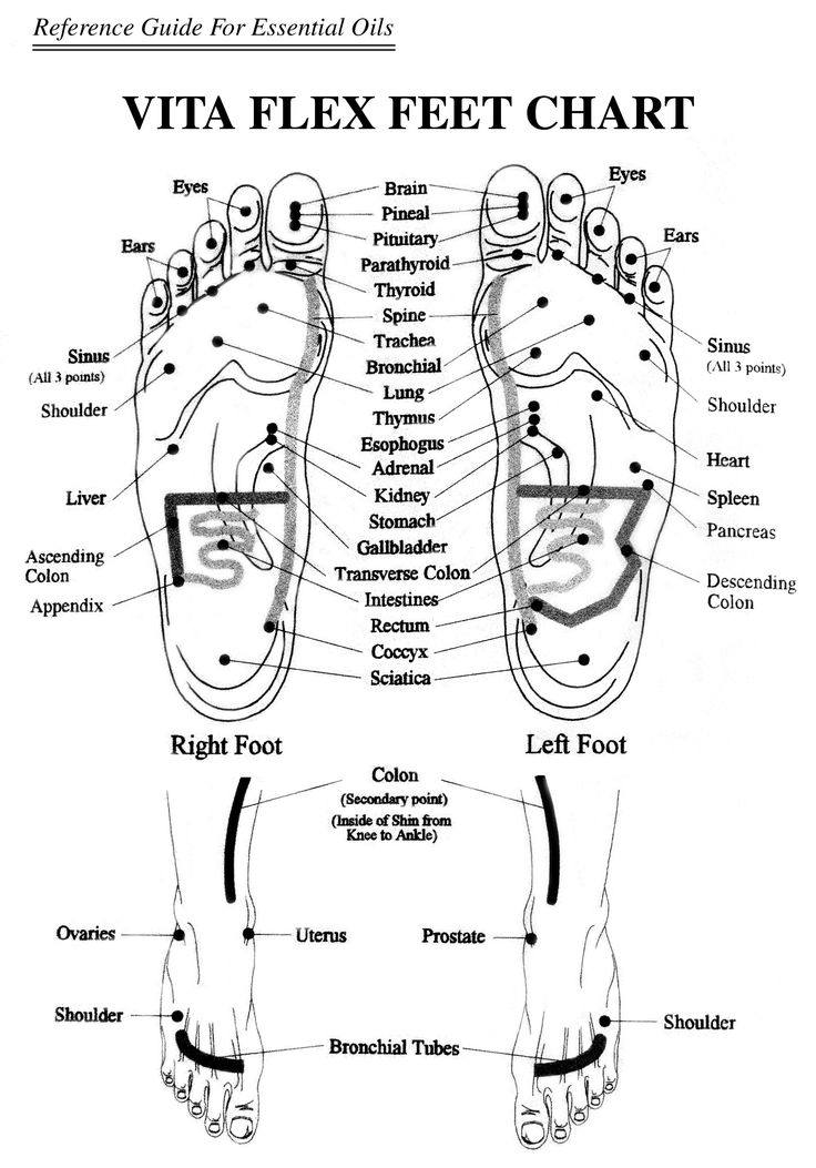 diagram for essential oils