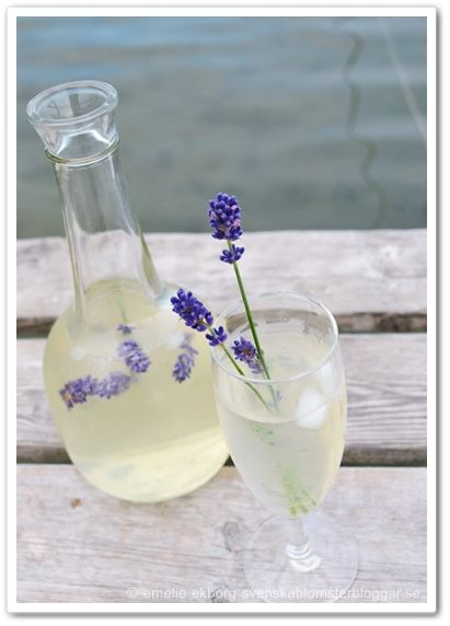 lavendel, lavendeldricka, lavendel drink, lavendel recept, lavender, lavender drink, lavender recipe
