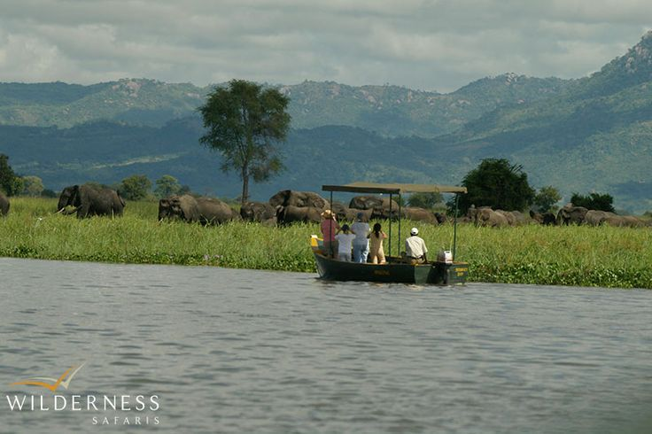 Game viewing by boat along the Shire River is always productive and rewarding #Malawi #Africa #safari