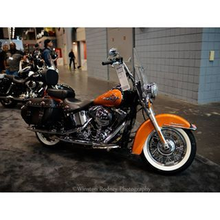 #winstonrodneyphotography #progressiveinternationalmotorcycleshow #harleydavidson #motorcycleshows