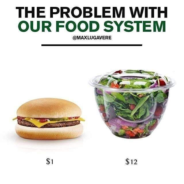 Food Is F King Expensive Food Food System Healthy Recipes