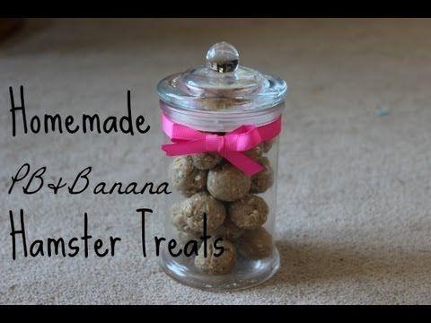 PB & Banana Hamster Cookies! soo cute your hamster will love them!