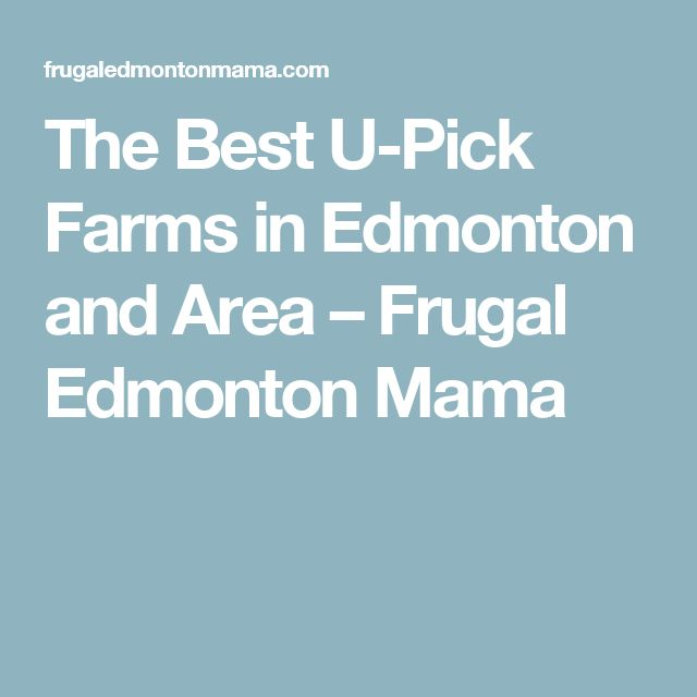 The Best U-Pick Farms in Edmonton and Area – Frugal Edmonton Mama