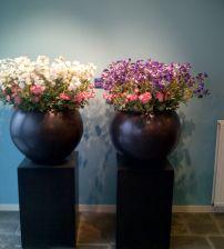 25 beste idee n over zijden bloemen op pinterest stoffen rozen satijnen bloemen en linten bloem - Hoe een stuk scheiden ...