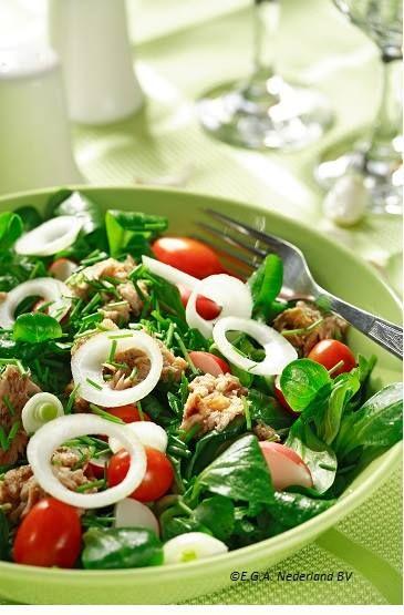 Meer dan 100 blik tonijn recepten op pinterest ingeblikte tonijn recepten ingeblikte tonijn - Maak een dressing ...
