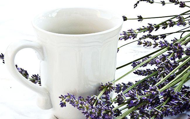 Ceaiul de LEVĂNȚICĂ – util în ANXIETATE, INSOMNIE, afecțiuni RESPIRATORII, tulburări DIGESTIVE | La Taifas