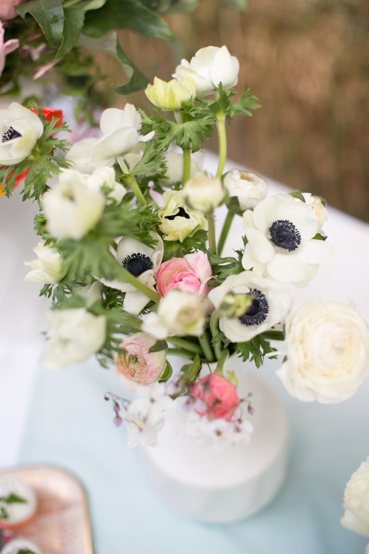 Wedding Flowers South Devon : Best images about wedding flowers on flower
