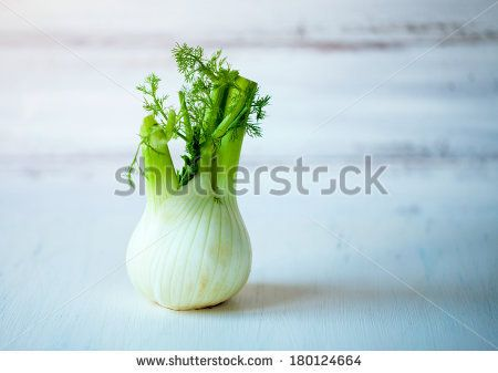 Fennel Bulb Stock Photos, Fennel Bulb Stock Photography, Fennel Bulb Stock Images : Shutterstock.com