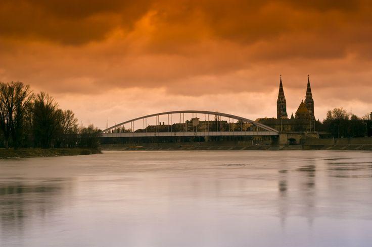 Most u Segedinu