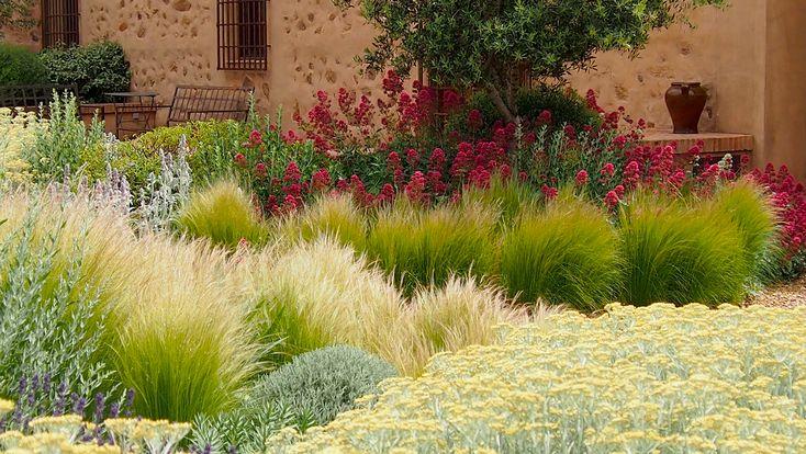 Jardin Toledo 2009: detalle plantación patio. Jardín mediterraneo, grava, jardín seco. Gravel garden, xeriscaping, dry garden, mediterranean garden. Spanish Courtyard.