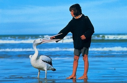 Storm Boy - loved this movie as a kid. Saw it with all my cousins at rosebud movies. Go figure.