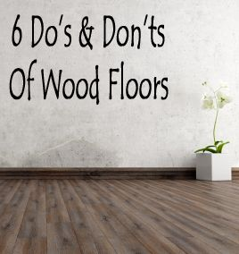 how to take care of hardwood floors with dogs