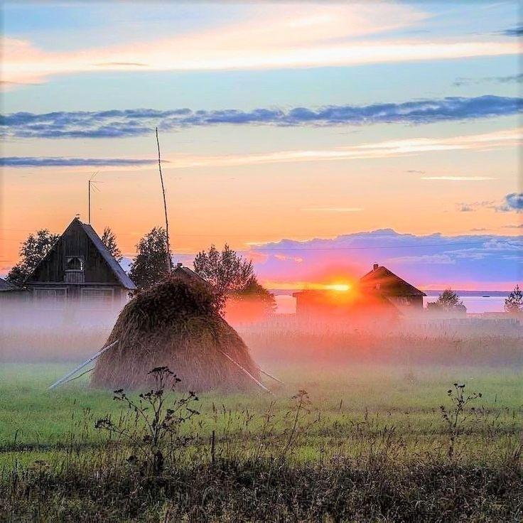 деревенское утро картинки