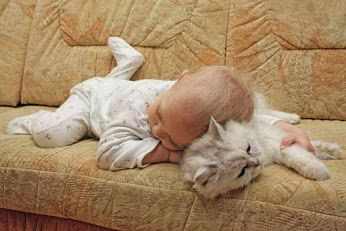 Cute Baby Sleeping With a Cat