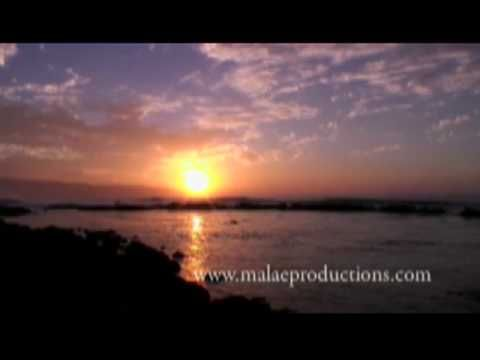 Superstars of pacific sun scene 1 5