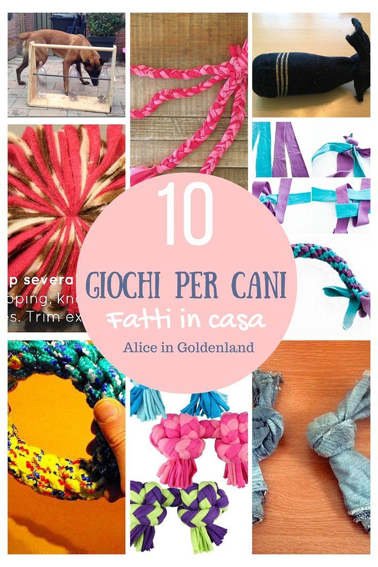 10 giochi per cani fatti in casa, 10 homemade toys for dogs homemade. Tutorials in english and italian.