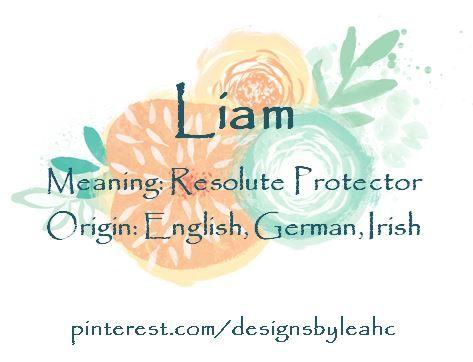 Baby Boy Name: Liam. Meaning: Resolute Protector. Origin: English, German, Irish. Irish short form of William.