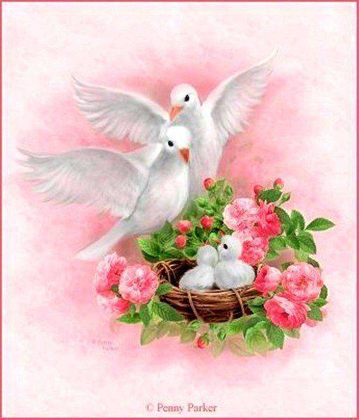 Девушке, открытки с днем свадьбы с голубями