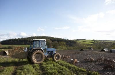 How to Obtain Grant Money to Start a Farm