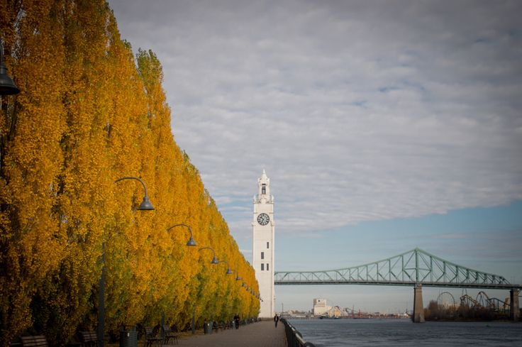 Montreal Clock tower in Fall | by Lorraine Goh