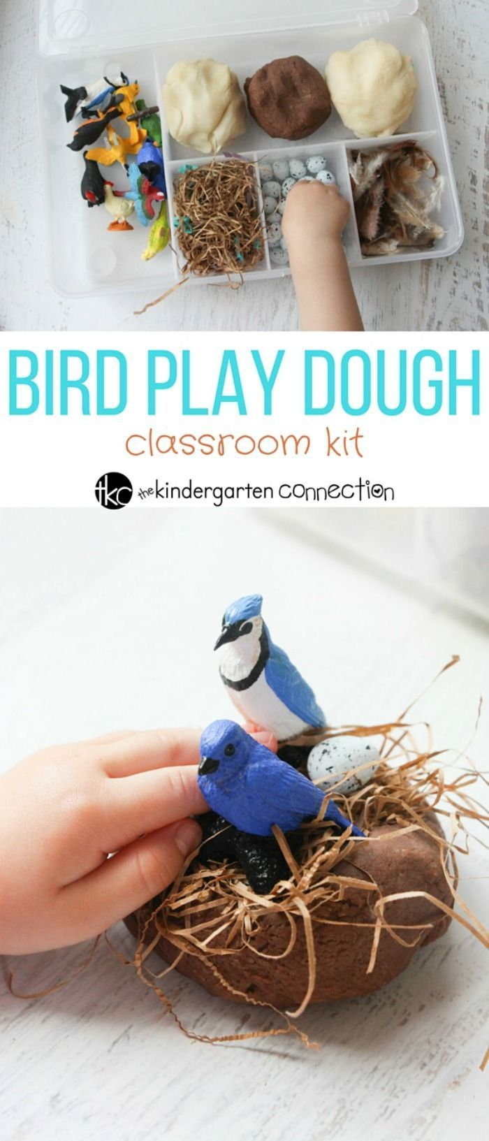 This bird themed play dough kit is perfect for spring, fall, or anytime! This sensory filled fun is great for hands on learning and play.