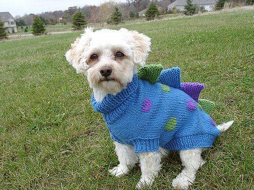 Вязание для собак. Спицами. - Вязание - Страна Мам