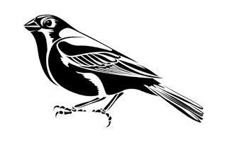 Птицы Татуировки Для Вас: Картинки племенных птиц Татуировки