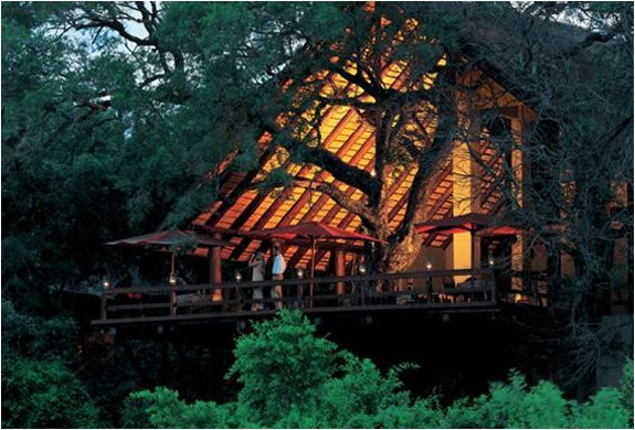 Enjoy your African Safari in style at the Londolozi resort. The tree camp is in Sabi Sands, Kruger Park, and offers ultra luxurious accommodation without losing the feeling of being in the true African bush. Its majestic surroundings and the amazing safari offered combined with genuine hospitality and service make Londolozi a world class safari destination.