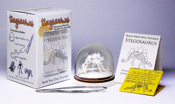 Stegosaurus Tiny Skeleton Model Kit With Glass by Tinysaurs