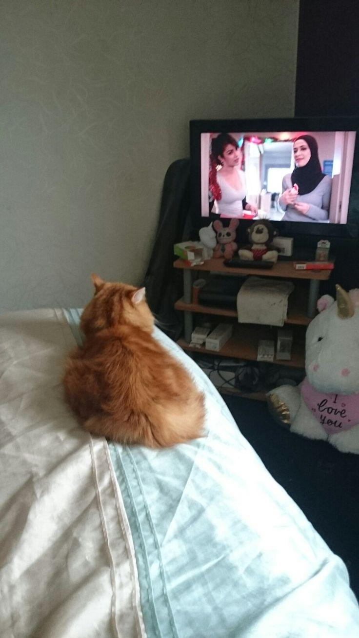 Amber watching Quantico....