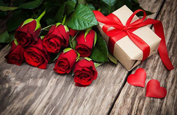 Flores Vermelho Papeis De Parede Gratuito 1k Fotos Para Visao Da