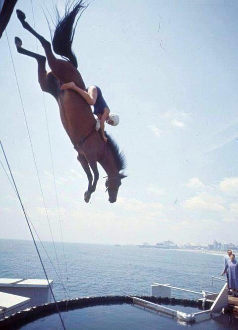 Diving Horse on Steel Pier