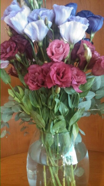 Flores de dia lunes :)