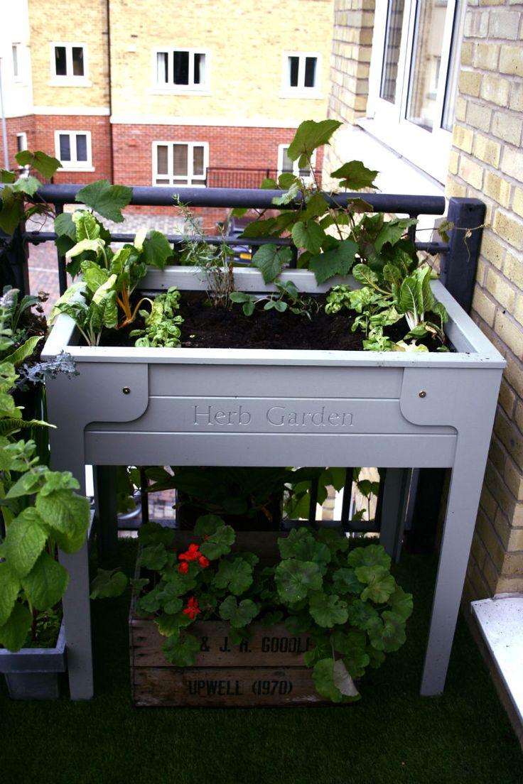 herb garden google search sparrow and finch flower box unit zen