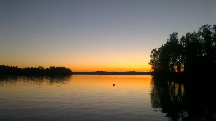 Kestiranta ilta auringossa