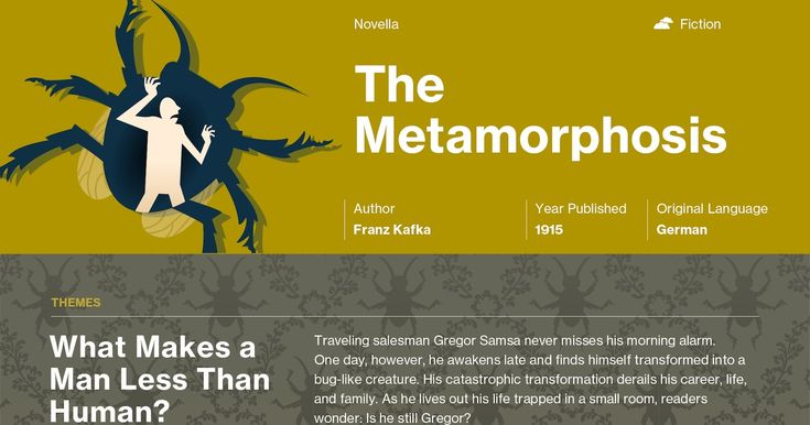 Franz Kafka's The Metamorphosis Infographic to help you understand everything about the book. Visually learn all about the characters, themes, and Franz Kafka.