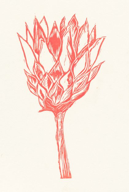 Pink Protea prints by Roule le Roux, via Behance