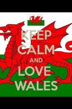 Wales Flag on Pinterest | Cymru, Cardiff Wales and Wales Cardiff