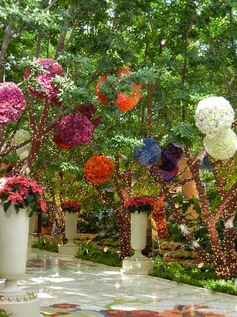 The indoor garden and the Wynn & Encoure hotels in lasvegas.. all real flowers and re-stocked each day.