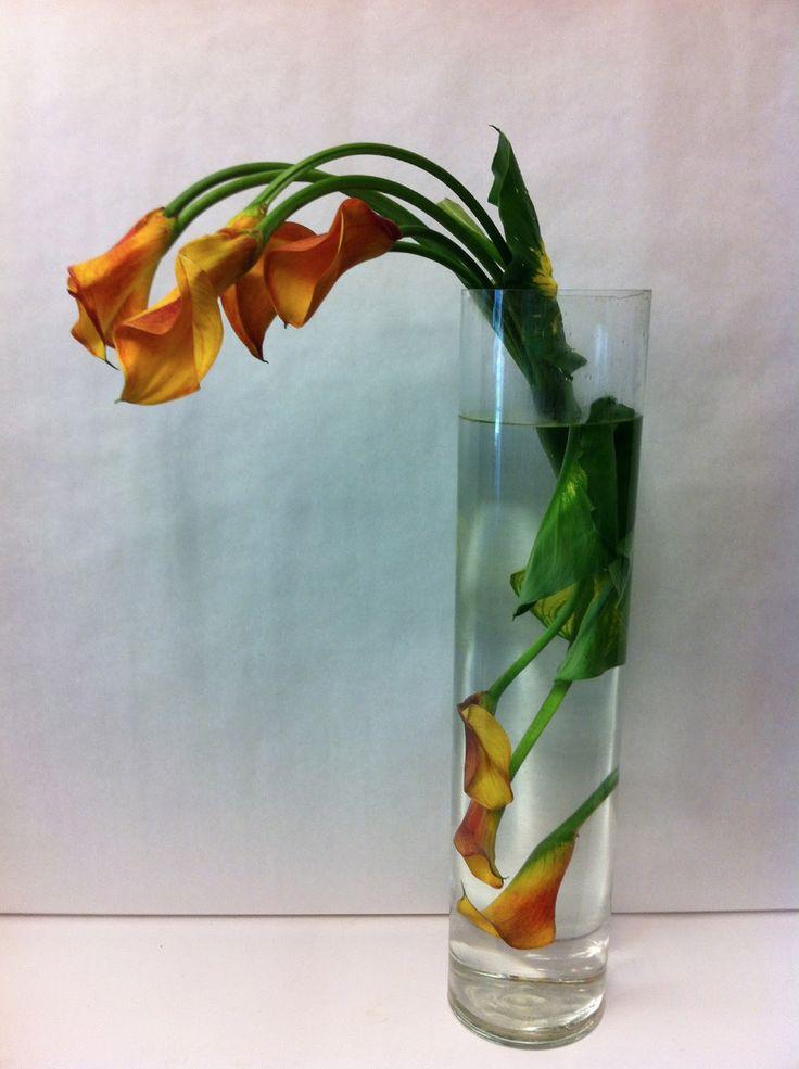 Best underwater flower arrangements images on pinterest