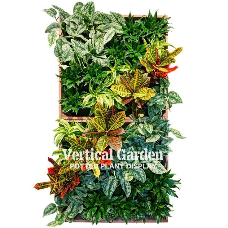 фитостены, фитомодули, живые стены, вертикальное озеленение, фитокартины, green wall, greenwall, фитостены Green Sky, vertical garden