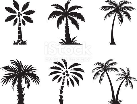 Set of palm trees