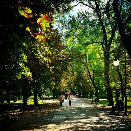 Jesień w Parku im. Kościuszki