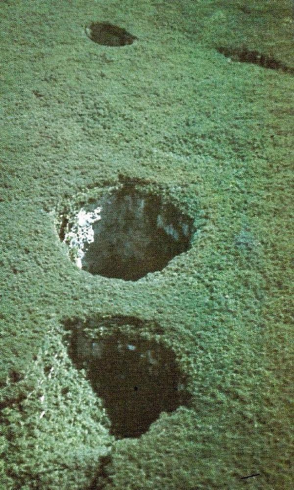 En la cima de una meseta boscosa densa en Venezuela es el mayor sumidero de arenisca del mundo, Sima Humboldt, que cae 1.000 pies (314 m). Su vecino, Sima Martel, es otra impresionante cenote. En la parte inferior de la Sima Humboldt es un bosque completamente aislado. Aberturas Sinkhole donde mini-selva han crecido son conocidas como dolinas, y están llenos de vida, que ha sido amortiguada del mundo exterior por la cueva. - Crédito: Dreamstime
