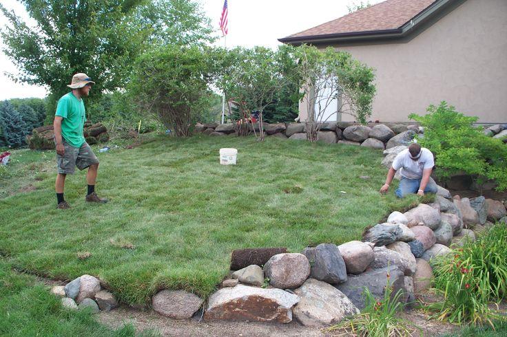 Installing sod for new #landscaping in Stillwater, MN www.ringlawncare.com